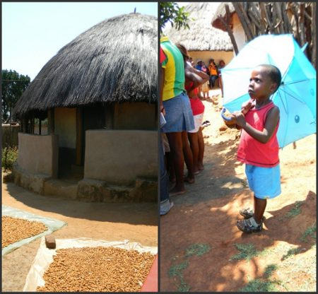 Modjadji_collage_littleboy_hut_jpg